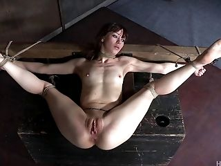 Rough amateur anal wife xxx skinny bondage
