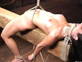 Nasty Petite Darkhaired In Hog-tie Caned