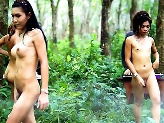 Thai Jungle Trannies